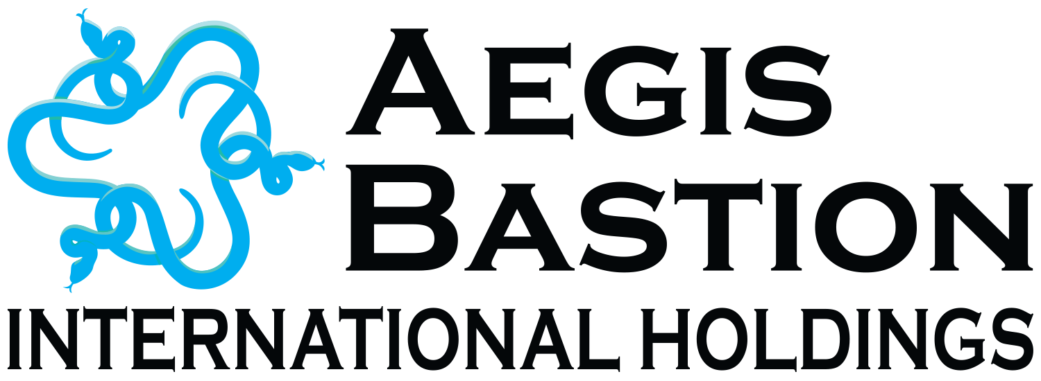 Aegis Bastion International Holdings LLC